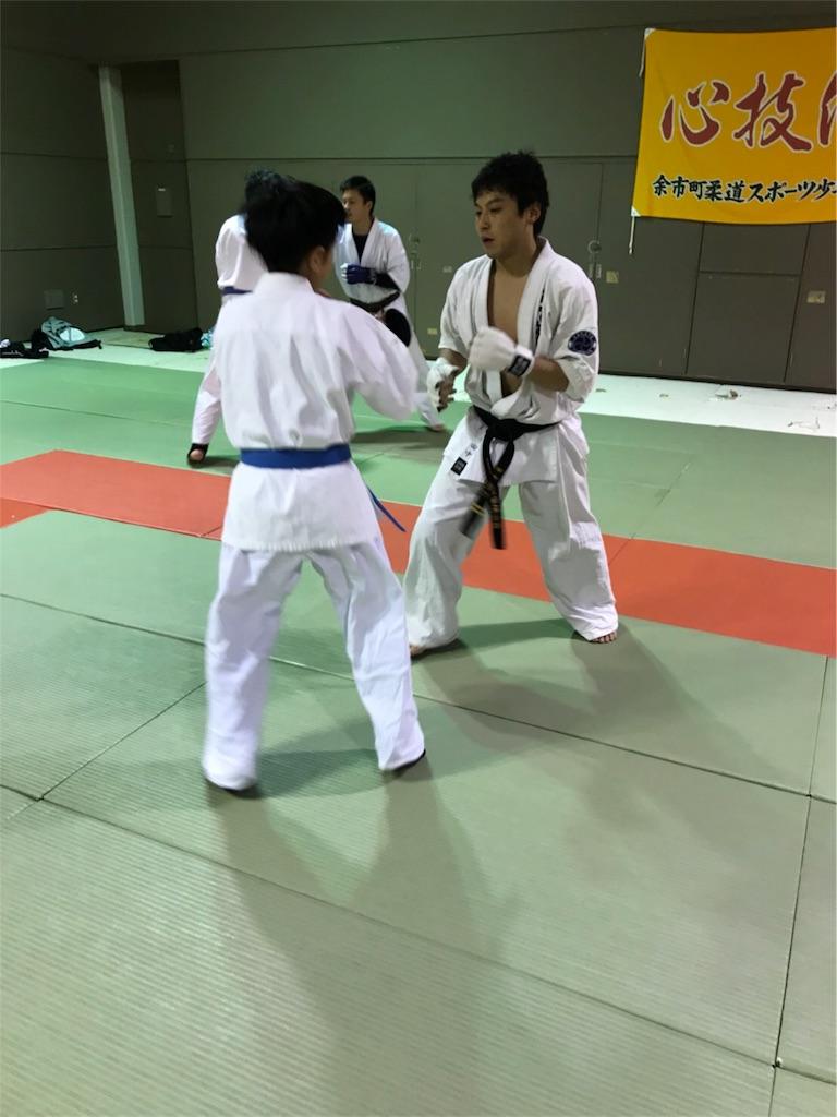 f:id:tatsuya_karate_mawasigeri_060110:20180113145334j:image