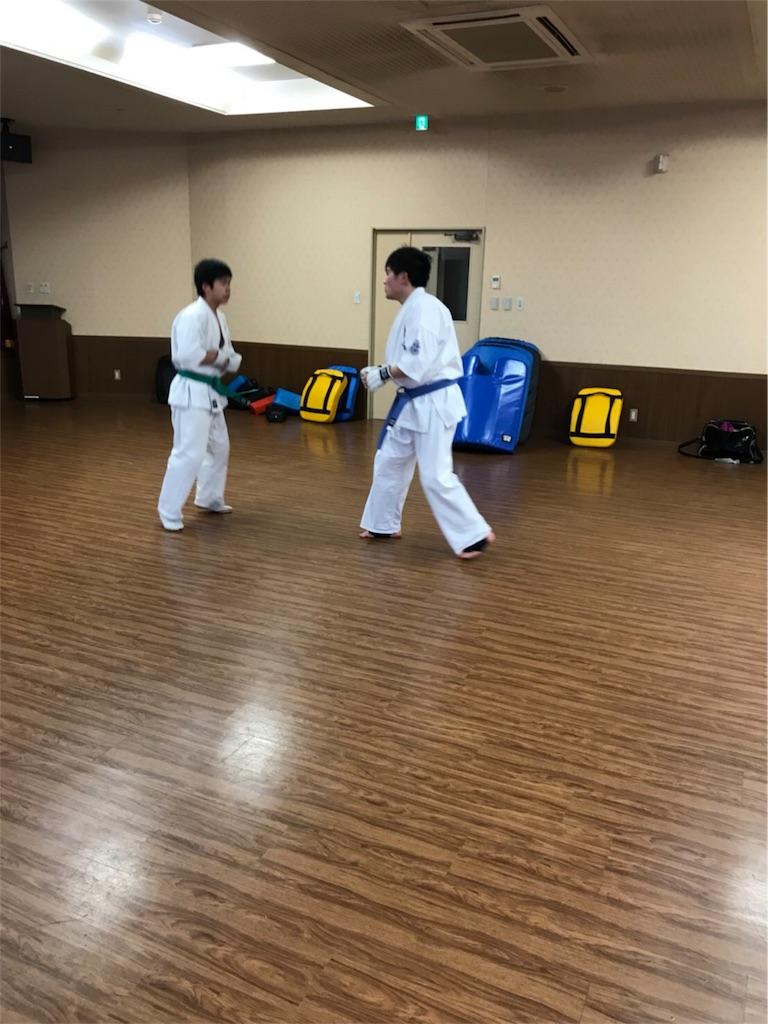 f:id:tatsuya_karate_mawasigeri_060110:20180121225703j:image