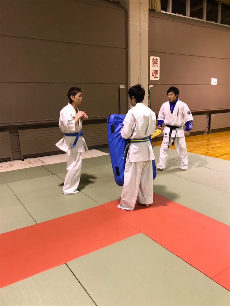 f:id:tatsuya_karate_mawasigeri_060110:20180201215848j:image