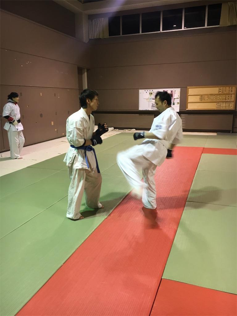 f:id:tatsuya_karate_mawasigeri_060110:20180220100359j:image