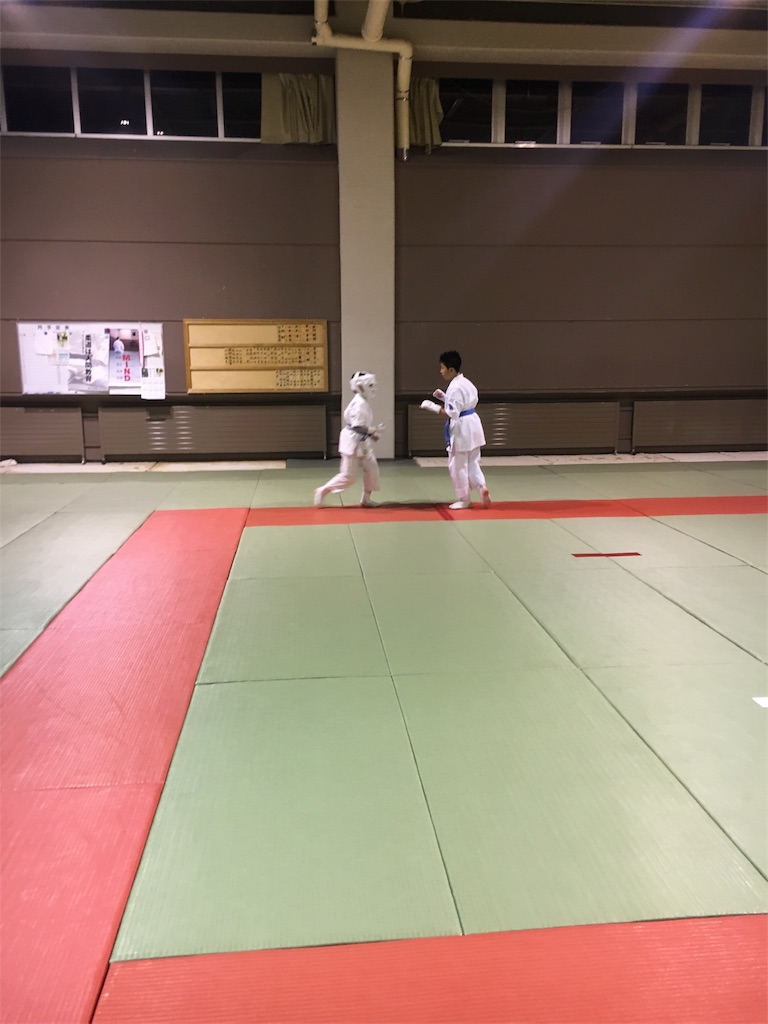 f:id:tatsuya_karate_mawasigeri_060110:20180220100550j:image