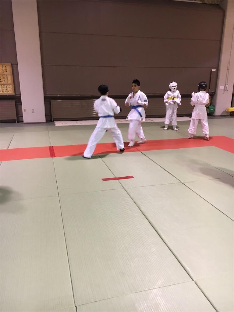 f:id:tatsuya_karate_mawasigeri_060110:20180220100617j:image