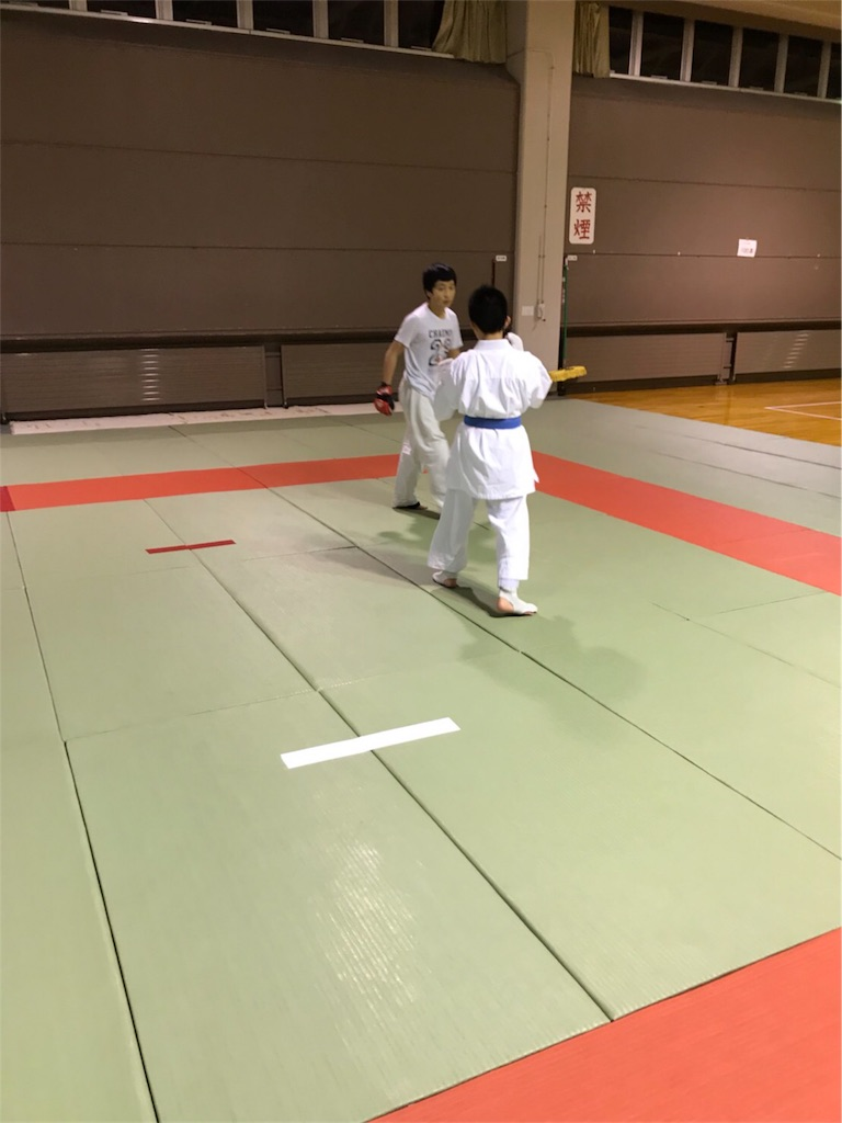 f:id:tatsuya_karate_mawasigeri_060110:20180225204425j:image
