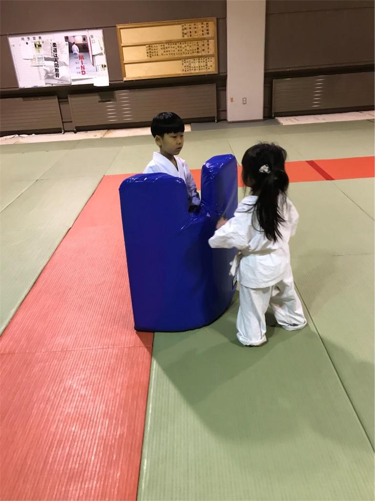 f:id:tatsuya_karate_mawasigeri_060110:20180225204544j:image