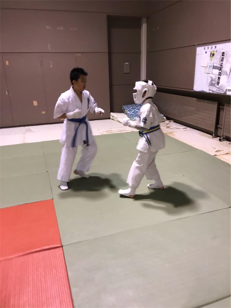 f:id:tatsuya_karate_mawasigeri_060110:20180227165514j:image