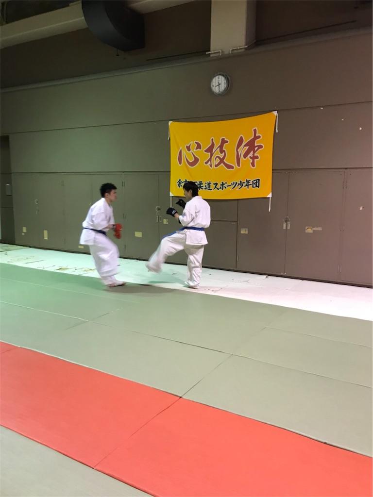 f:id:tatsuya_karate_mawasigeri_060110:20180227165709j:image