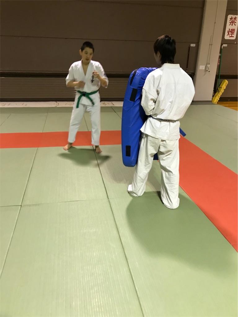 f:id:tatsuya_karate_mawasigeri_060110:20180317191228j:image