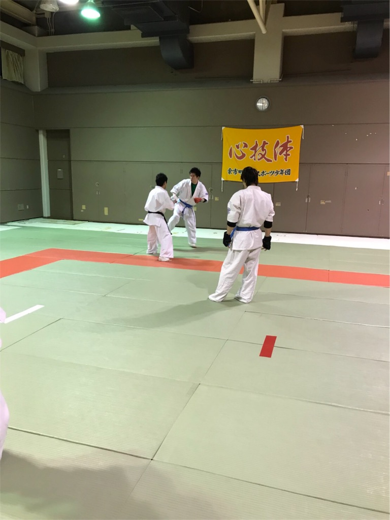 f:id:tatsuya_karate_mawasigeri_060110:20180322104318j:image