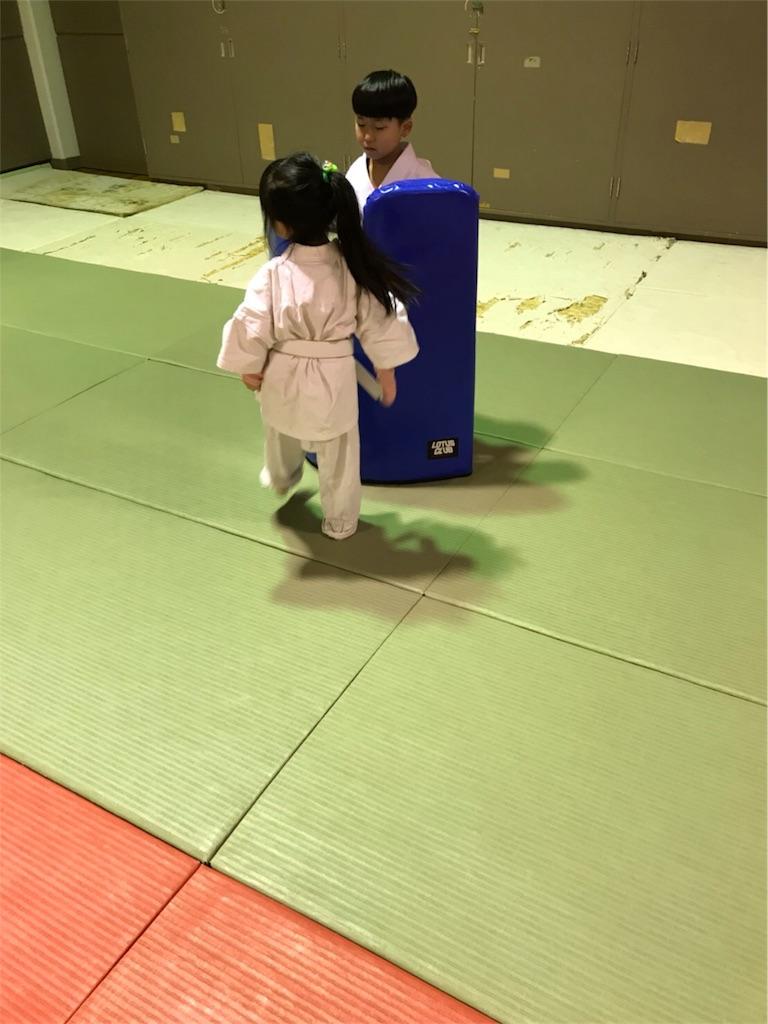 f:id:tatsuya_karate_mawasigeri_060110:20180322104437j:image