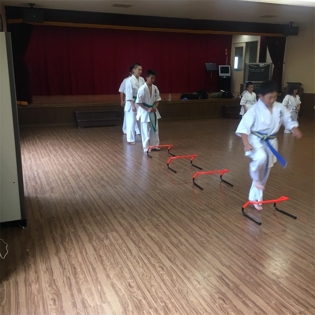 f:id:tatsuya_karate_mawasigeri_060110:20180603222150j:image