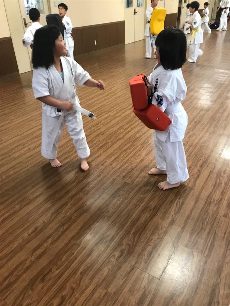 f:id:tatsuya_karate_mawasigeri_060110:20180603222210j:image