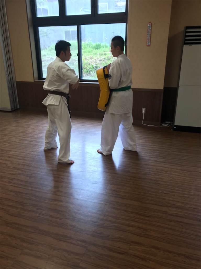 f:id:tatsuya_karate_mawasigeri_060110:20180603222234j:image