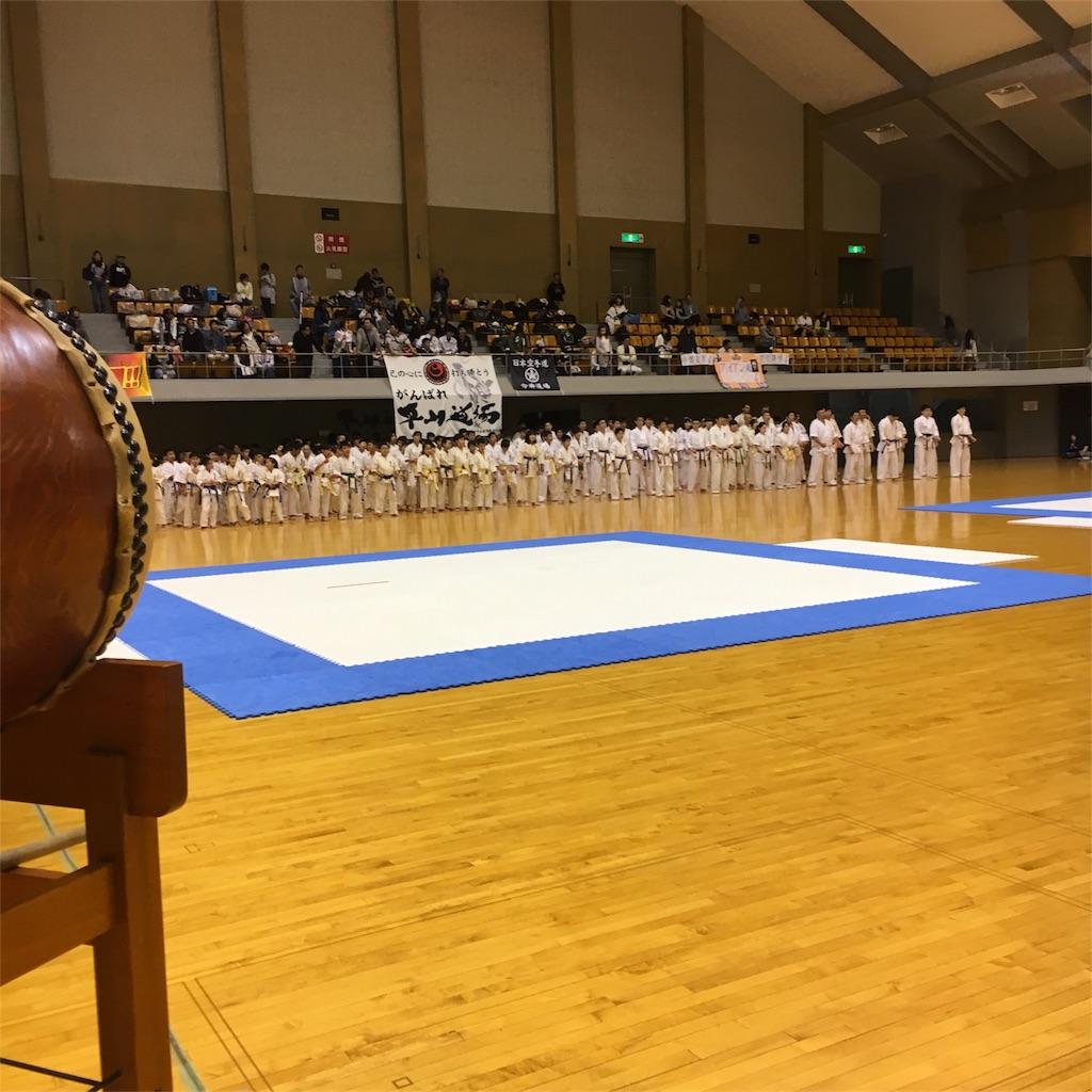 f:id:tatsuya_karate_mawasigeri_060110:20180611034236j:image