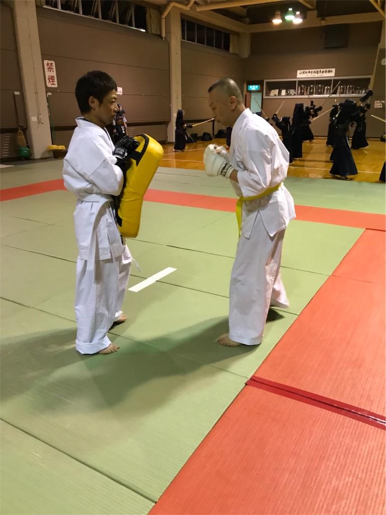 f:id:tatsuya_karate_mawasigeri_060110:20180616144451j:image