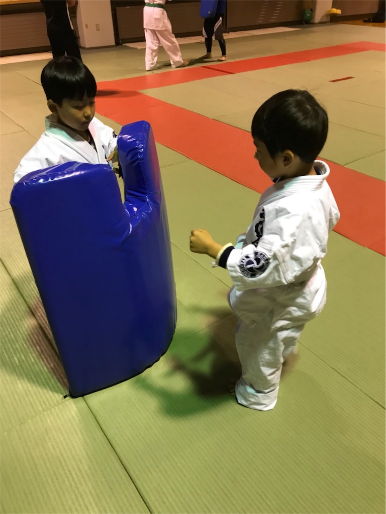 f:id:tatsuya_karate_mawasigeri_060110:20180616145122j:image