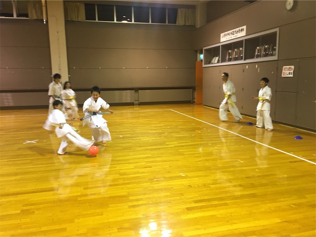 f:id:tatsuya_karate_mawasigeri_060110:20180626120715j:image