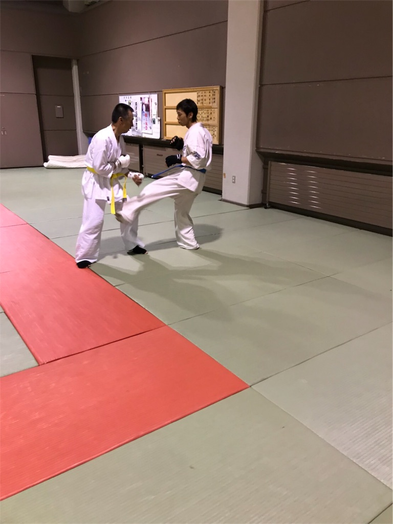 f:id:tatsuya_karate_mawasigeri_060110:20180714002115j:image