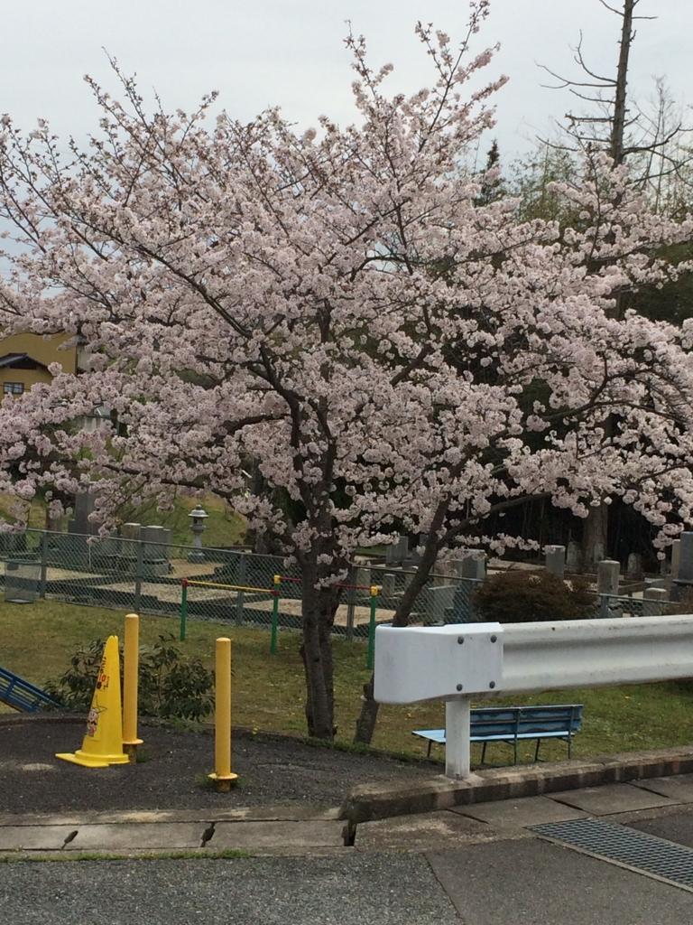 f:id:tatsuyakawakami:20160405223030j:plain