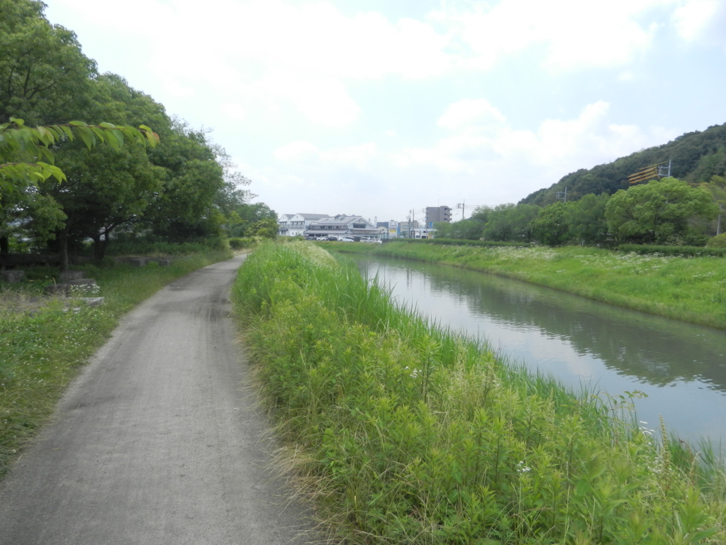 f:id:tatsuyakawakami:20160614174700j:plain