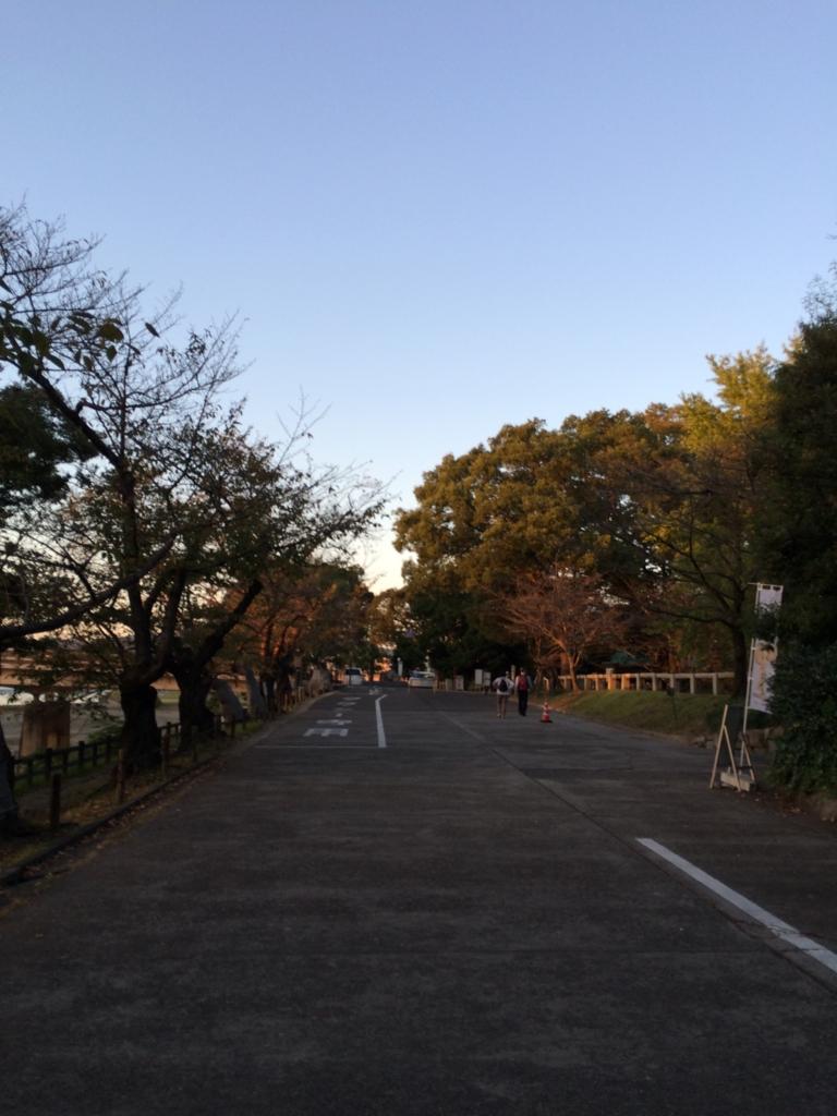 f:id:tatsuyakawakami:20161014221152j:plain