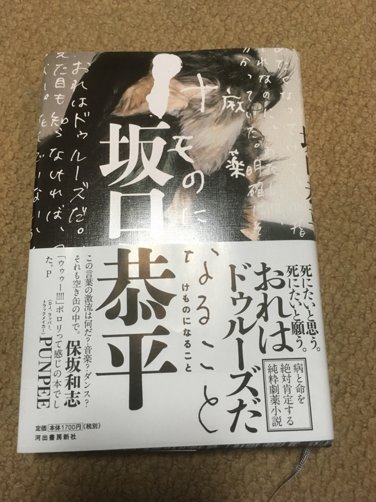 f:id:tatsuyakawakami:20170416225615j:plain