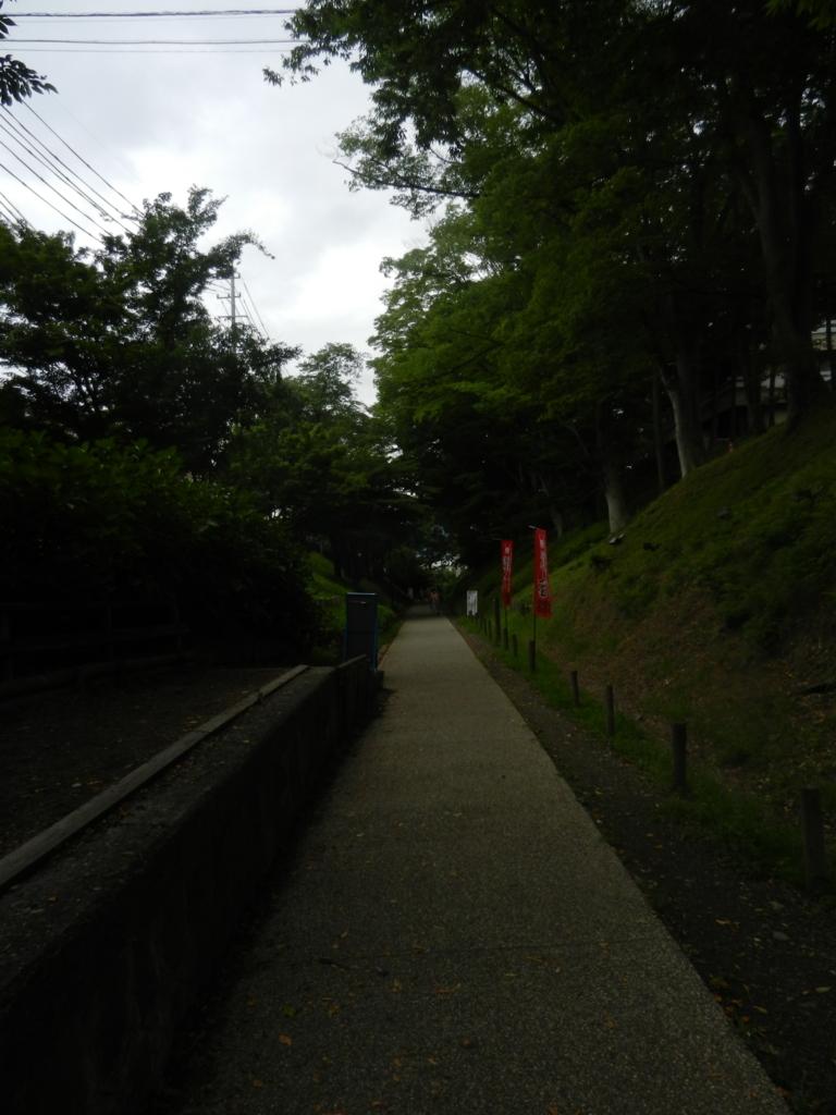 f:id:tatsuyakawakami:20170801180750j:plain