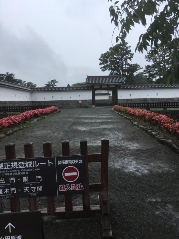 f:id:tatsuyakawakami:20180611214028j:plain