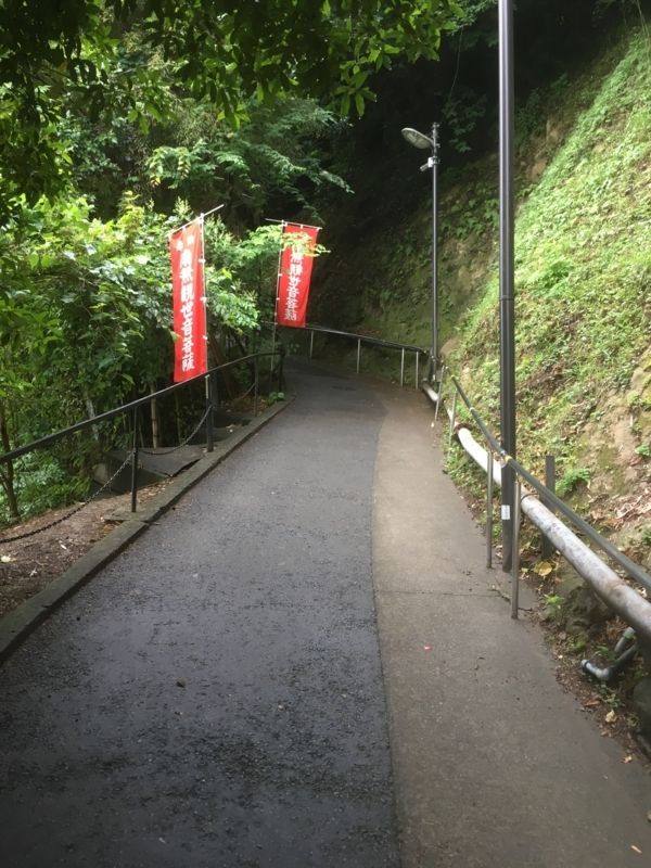 f:id:tatsuyakawakami:20180616102047j:plain