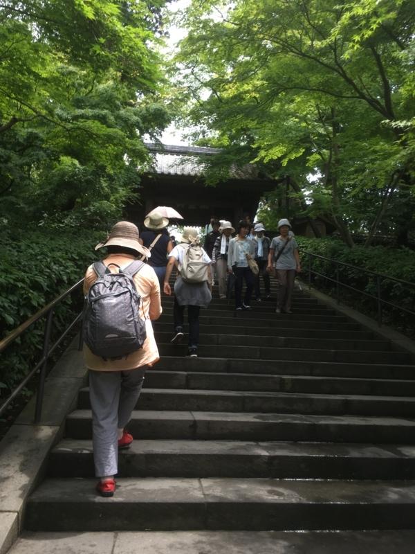 f:id:tatsuyakawakami:20180616125505j:plain