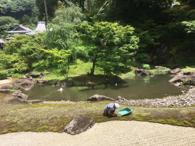 f:id:tatsuyakawakami:20180616125850j:plain
