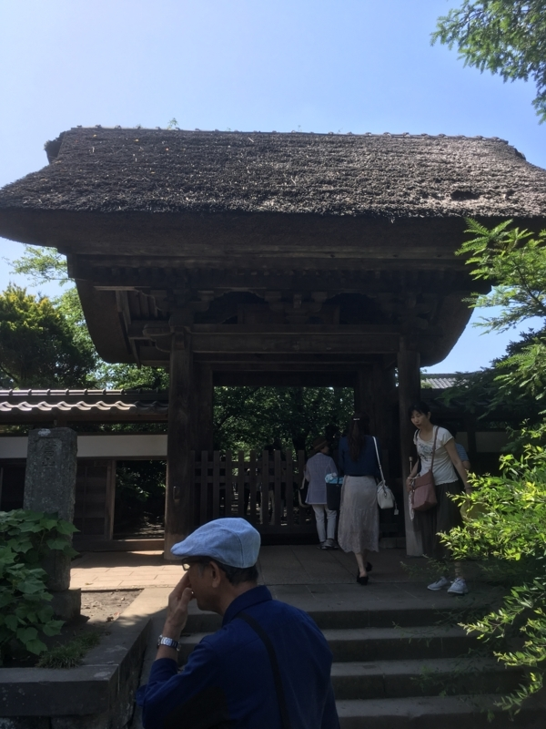 f:id:tatsuyakawakami:20180616165435j:plain