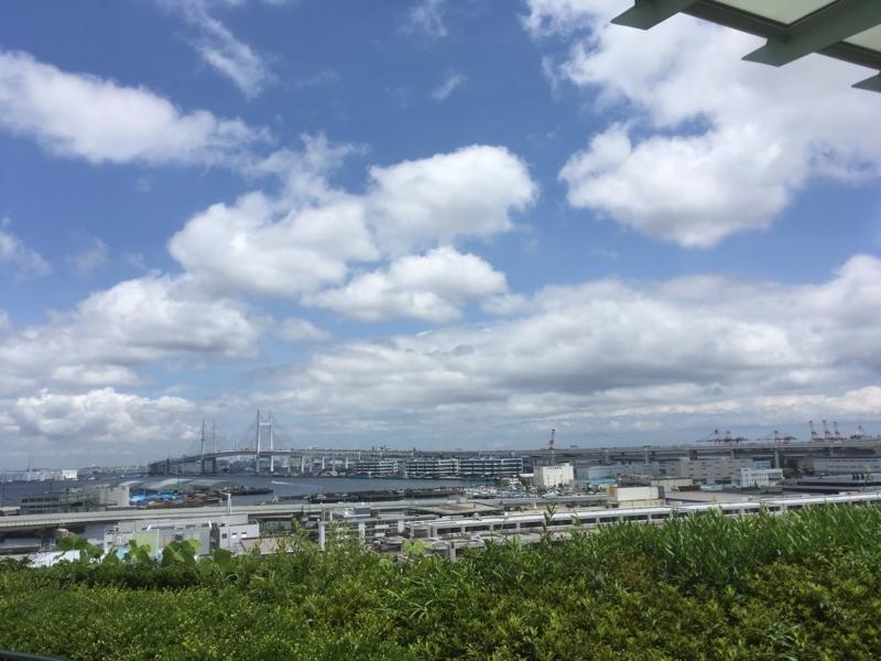 f:id:tatsuyakawakami:20180618184335j:plain