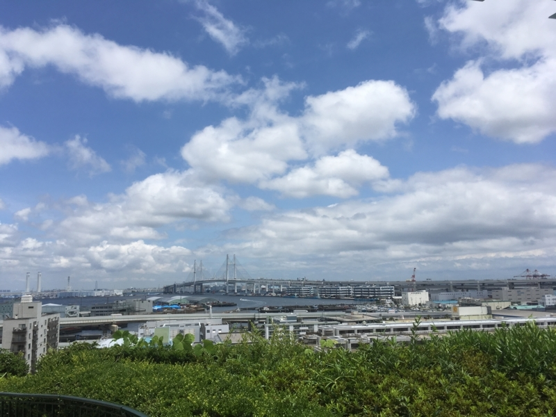 f:id:tatsuyakawakami:20180618184404j:plain
