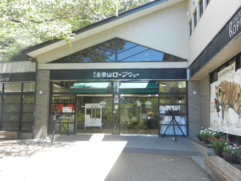 f:id:tatsuyakawakami:20180811202245j:plain