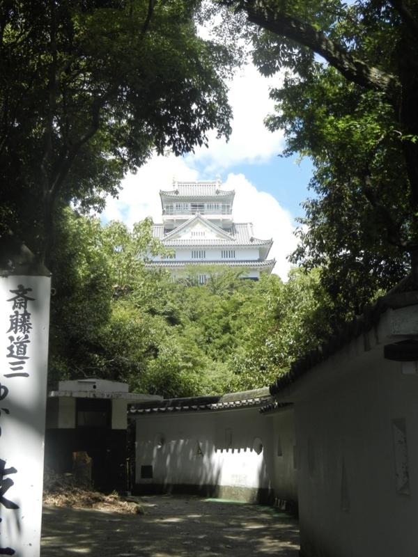 f:id:tatsuyakawakami:20180811220957j:plain