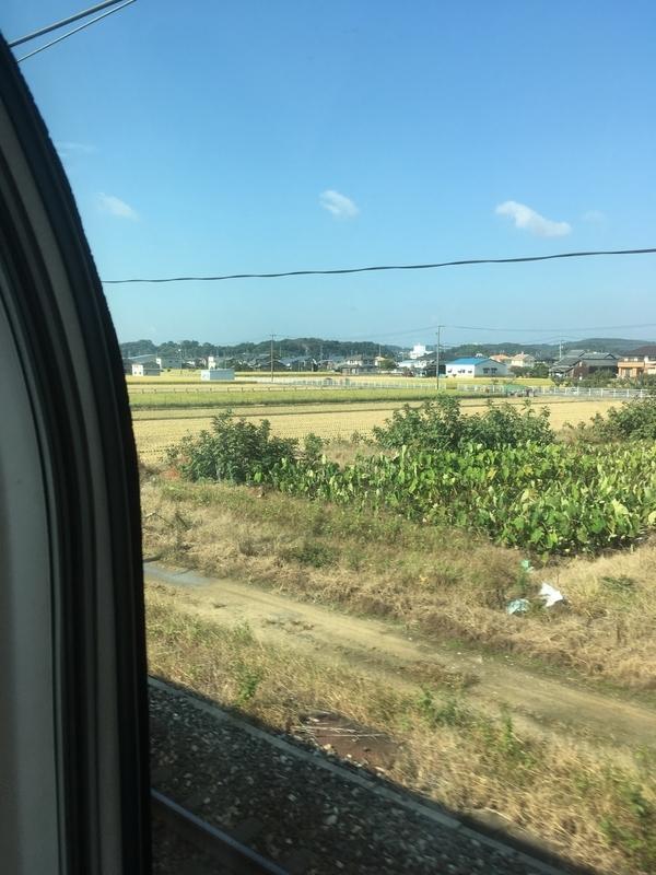 f:id:tatsuyakawakami:20181026183211j:plain