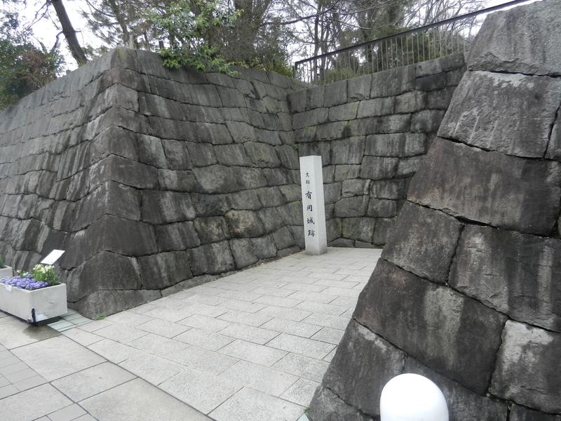 f:id:tatsuyakawakami:20190308182716j:plain