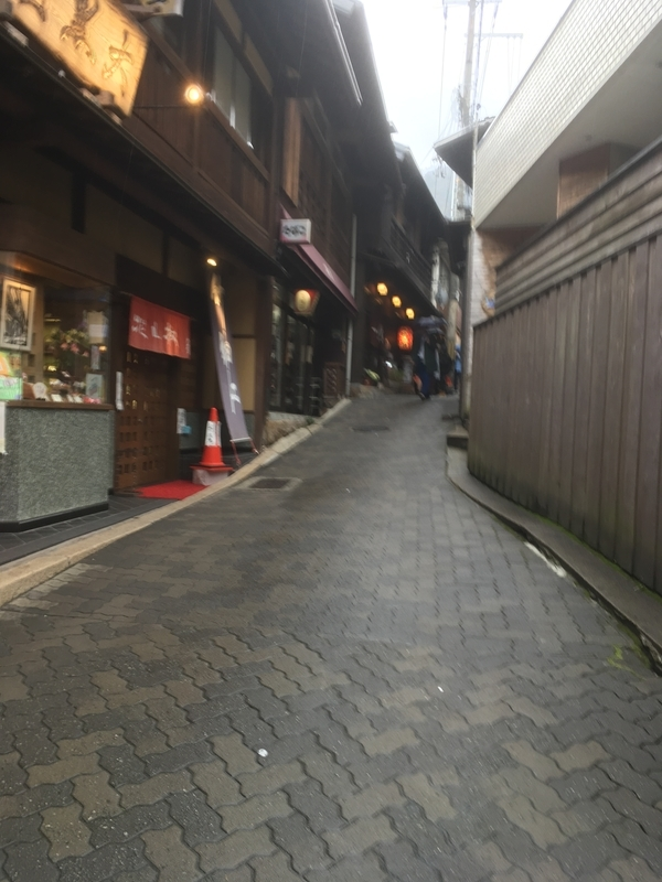 f:id:tatsuyakawakami:20190308225432j:plain