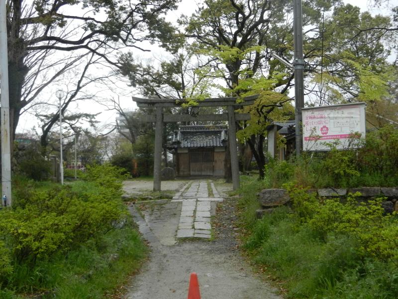 f:id:tatsuyakawakami:20190418123555j:plain