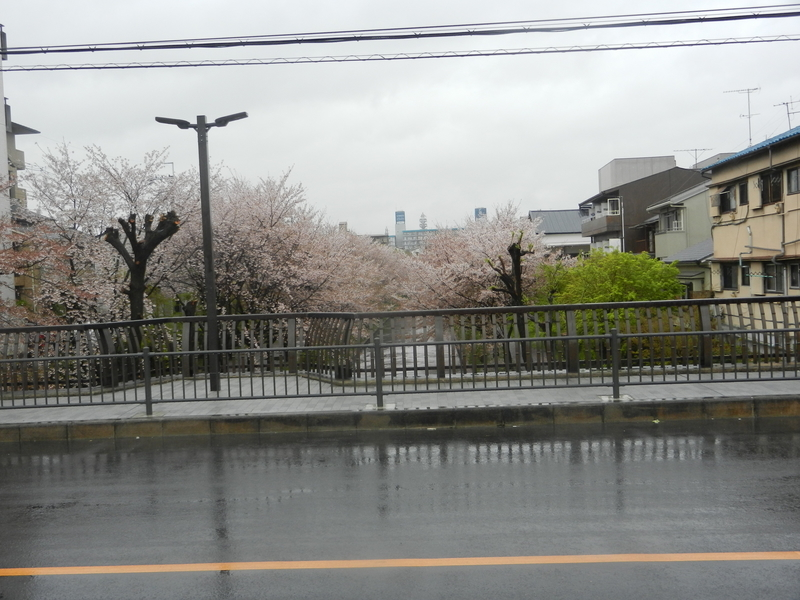 f:id:tatsuyakawakami:20190418145649j:plain