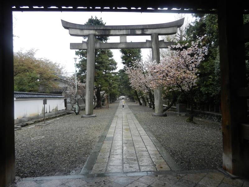 f:id:tatsuyakawakami:20190418151025j:plain