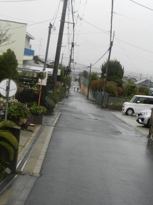 f:id:tatsuyakawakami:20190418160331j:plain
