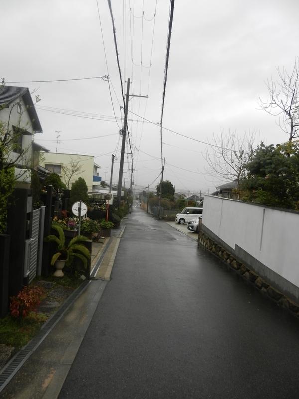 f:id:tatsuyakawakami:20190418160340j:plain