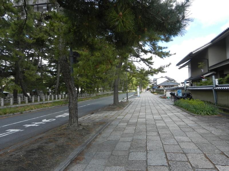 f:id:tatsuyakawakami:20190418214338j:plain