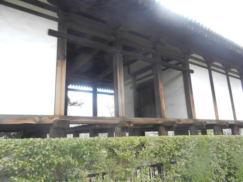 f:id:tatsuyakawakami:20190418221301j:plain
