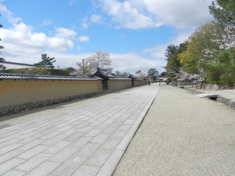f:id:tatsuyakawakami:20190418221739j:plain