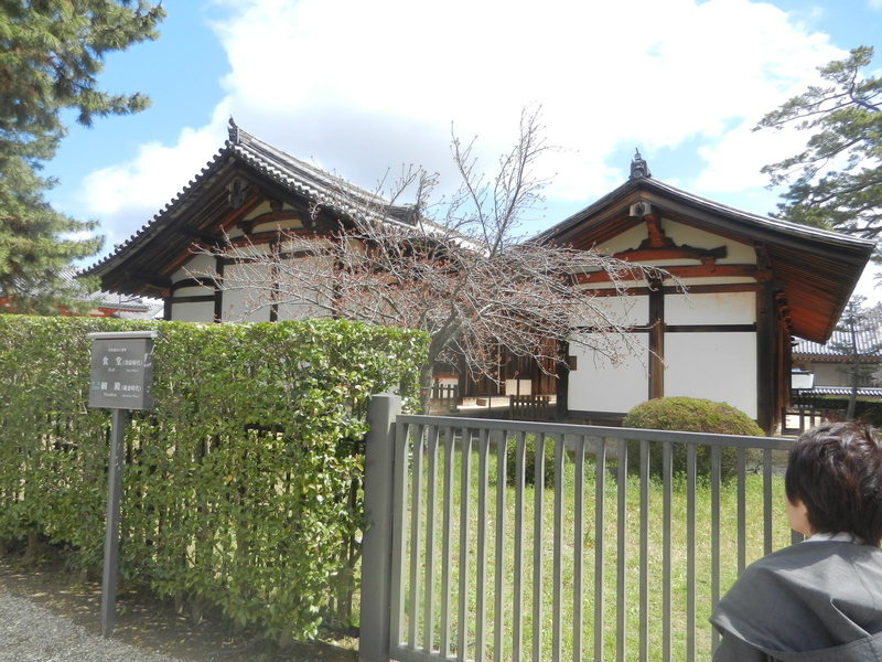 f:id:tatsuyakawakami:20190418221759j:plain