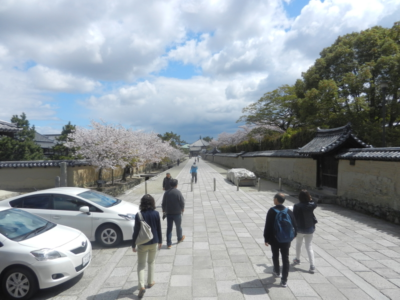 f:id:tatsuyakawakami:20190418222323j:plain