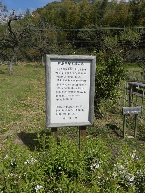 f:id:tatsuyakawakami:20190422131003j:plain