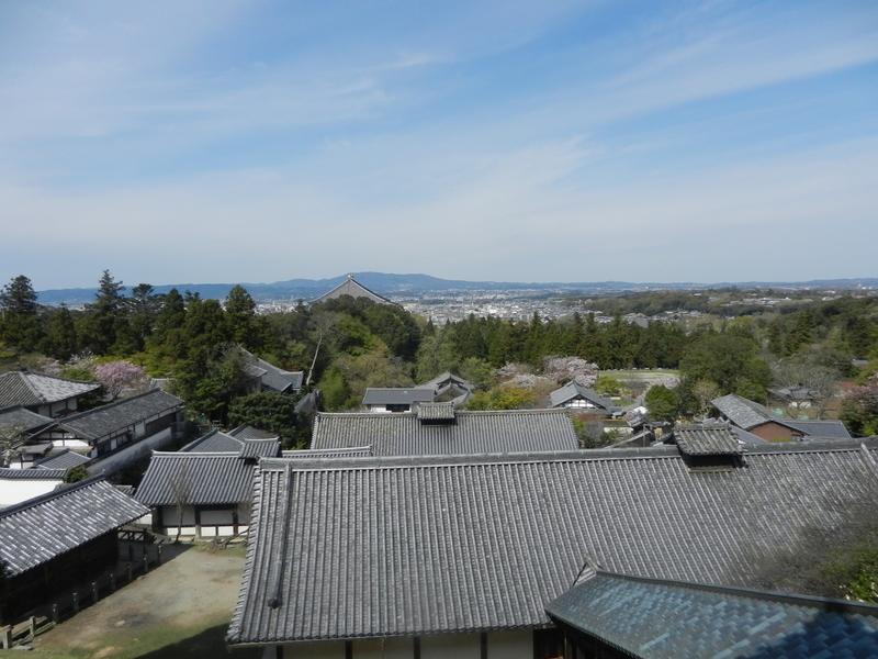 f:id:tatsuyakawakami:20190424175535j:plain